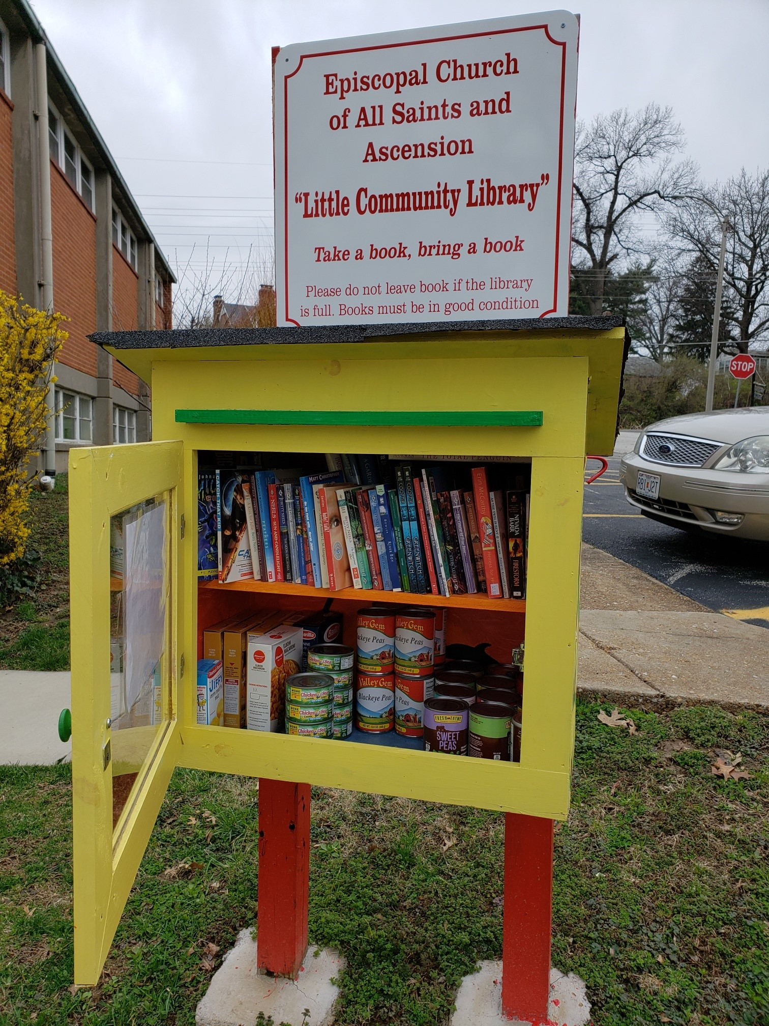 Little Library and Pantry 2020