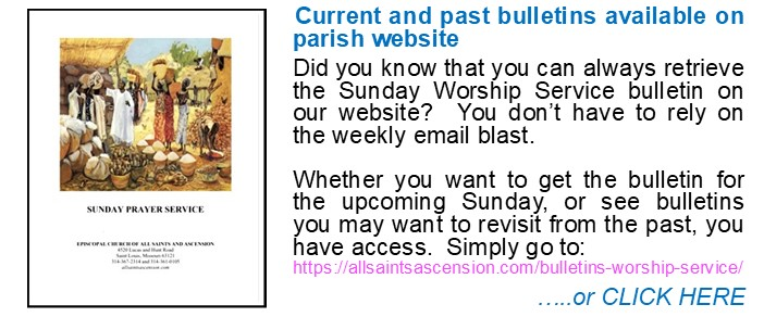 Bulletin Access Announcement