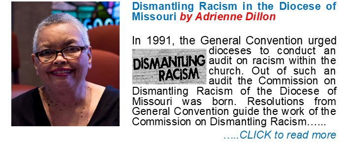 Dismantling Racism by Adrienne Dillon
